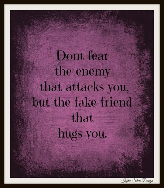 Dont fear the enemy that attacks you, but the fake friend that hugs you.