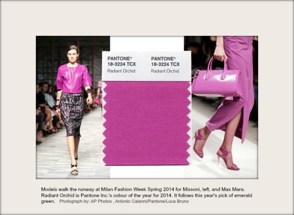 Models walk the runway at Milan Fashion Week Spring 2014 for Misson