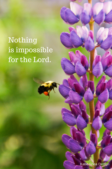 Nothing is impossible for the Lord.   Katie Shea Design