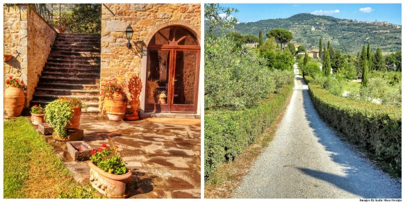 road to Baracchi Winery Collage