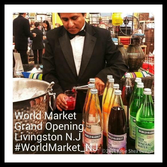 Italian Soda Varieties  by World Market #WorldMarket_NJ photo credit #KatieSheaDesign