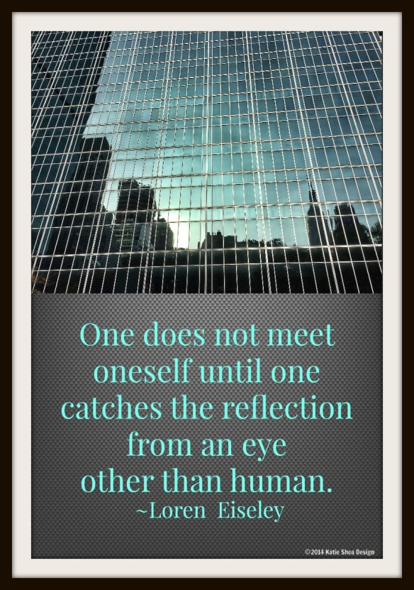 One does not meet oneself until one catches the reflection from an eye other than human. Loren Eiseley   Image shot by Katie Shea Design NYC with iPhone6 VZWBuzz