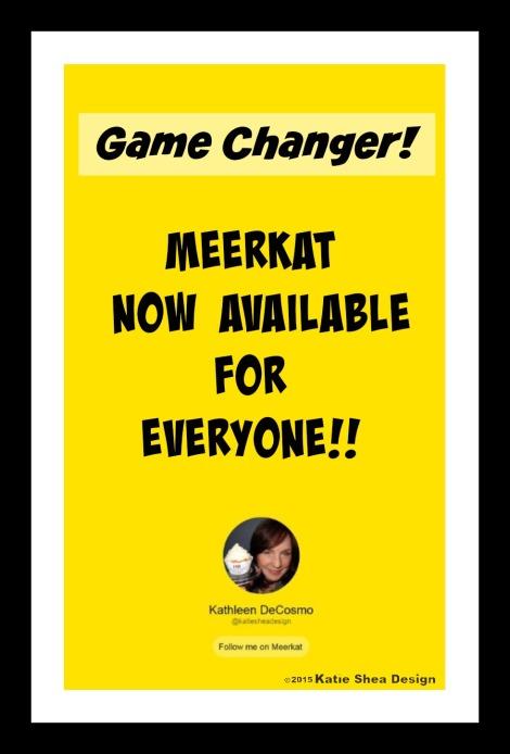 Meerkat Now Available on Android  Follow Kathleen DeCosmo Of Katie Shea Design on Meerkat