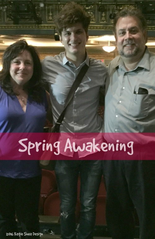 Kathleen DeCosmo Alex Boniello Louis DeCosmo at Spring Awakening NYC image shot by Kathleen DeCosmo KatieSheaDesign VZWBuzz LiFEOnFiOS 2016